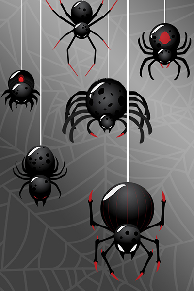 Super Creepy Spiders